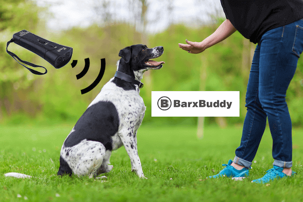 Barxbuddy Review